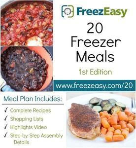 BRAND NEW! 20 Freezer Meals Plan, 1st Ed.