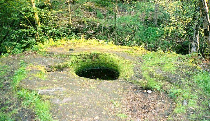 Sacred Well at Dunino Den