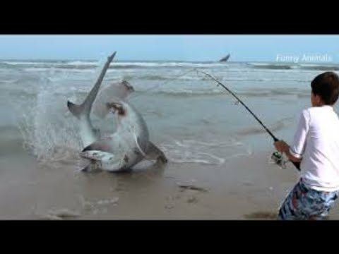 fishing by home made tools and get esay tips to caught fish,fishing tricks