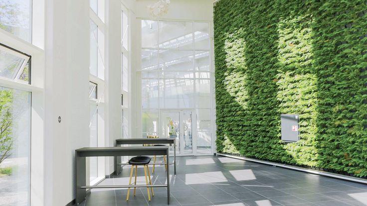 Den flotte 55 kvadratmeter store plantevæg på Green Solution House er et element i den omfattende strategi, der går under overskriften bæredygtighed.