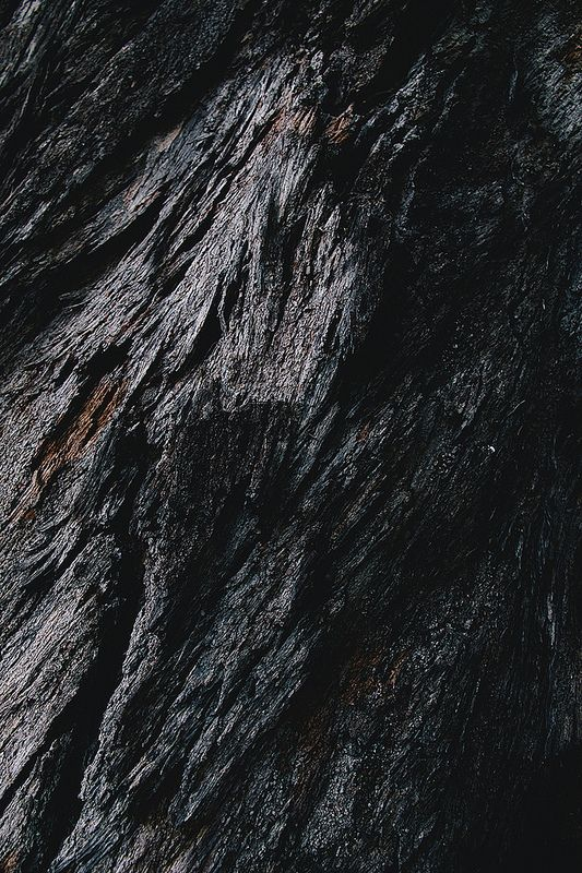 Black Wood Texture by Mahin Fayaz