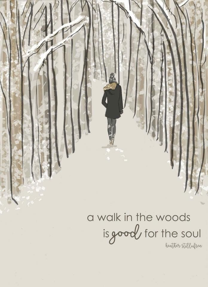 A walk in the woods is good for the soul. - Heather Stillufsen
