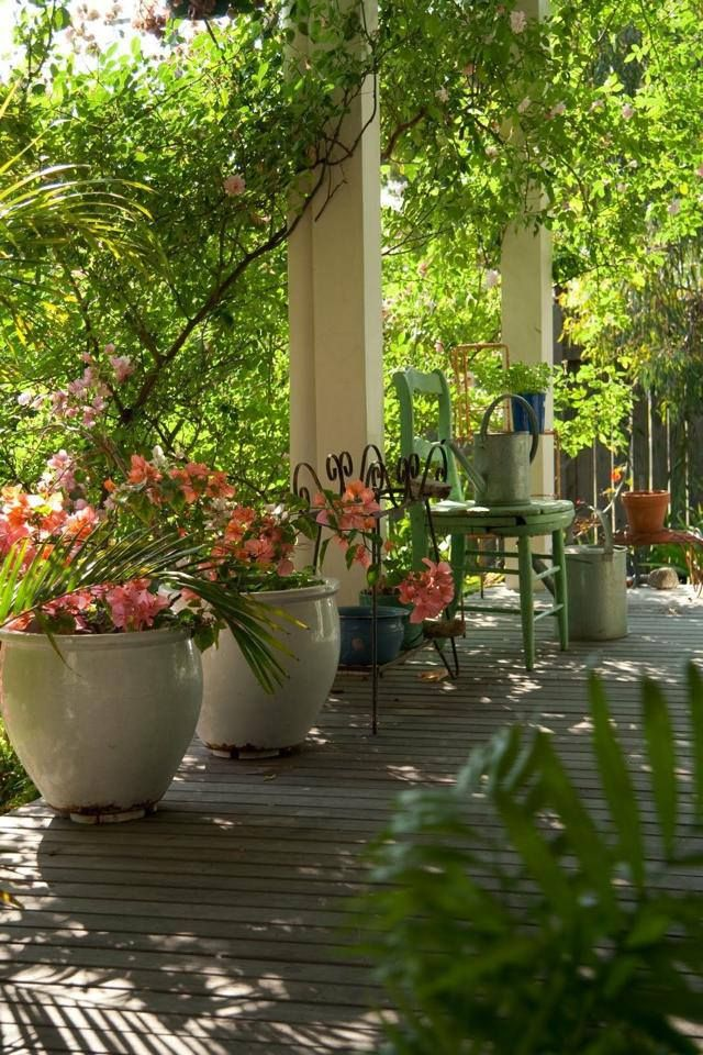 Outdoor space - love the over-sized pots and gorgeous flowers on this beautiful porch.