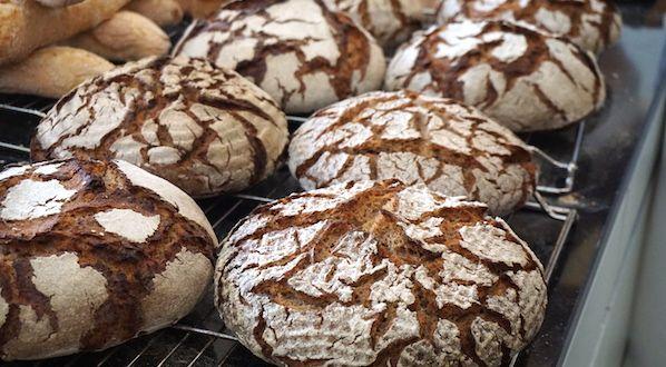 Brotbacken-Workshop, 11./12.10.2016: für das Roggenbrot wurde der Roggensauerteig mit einem Anteil Altbrot, 70 Grad warmen Wasser und Roggenmehl vermischt. Die Ergebnisse sahen super aus.