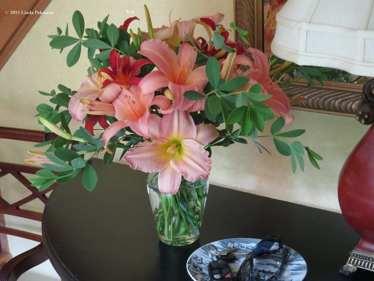Day lilies, 2014