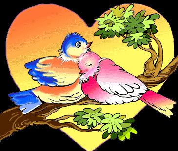 Konny's Bird gifs