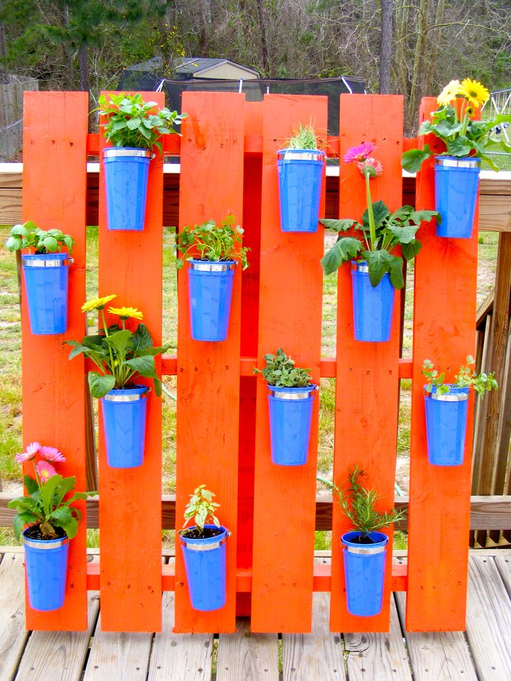 Pallet Herb Garden using dollar store cups! I just love the colors and how it turned out!Gardens Ideas, Dollar Stores, Colors, Pallets Garden, Flower Gardens, Herbs Gardens, Mason Jars, Old Pallets, Recycle Pallets