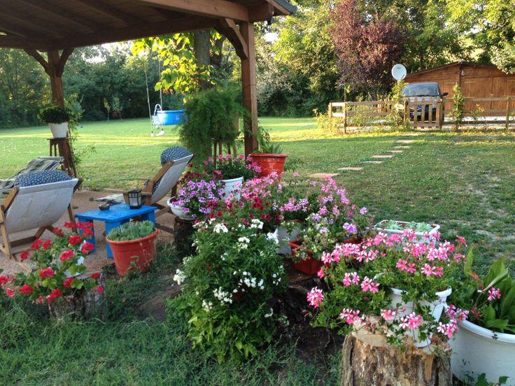 vasi di fiori su tronchi