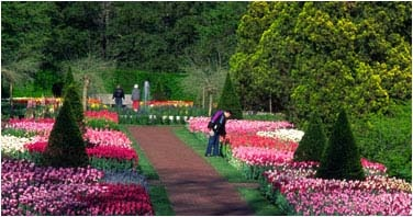24 best gardens museums and libraries images on pinterest libraries book shelves and bookcases for Longwood gardens longwood road kennett square pa