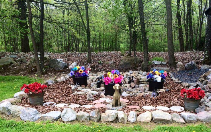 My dog's burial ground.
