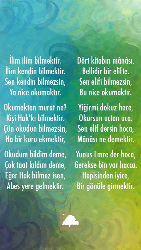 Yunus Emre : İlim İlim Bilmektir Anadolu Çınarları poster