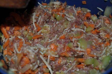 Samoussas au boeuf et légumes (feuilles de brick maison) | Recette asiatique facile, Recettes de ...