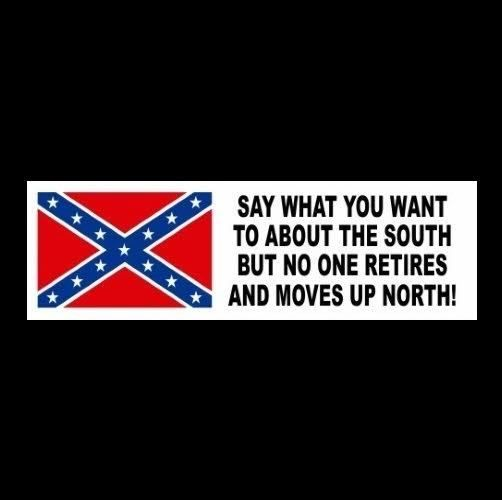 "Funny ""SAY WHAT YOU WANT TO ABOUT THE SOUTH"" rebel decal BUMPER STICKER redneck #Unbranded"