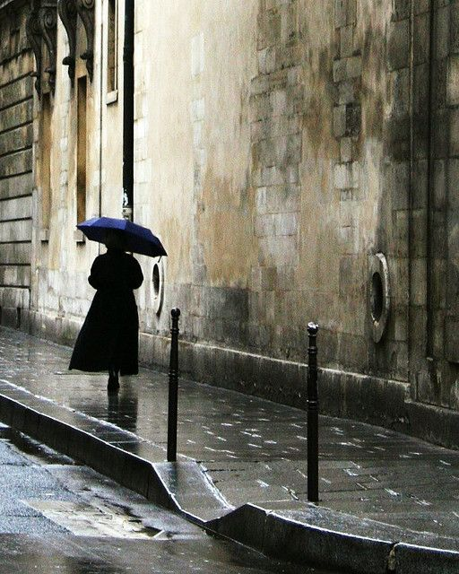 """This picture is BEGGING to become a painting... """"Walking in the rain - Marais"""", by Tansy Liverwort"""