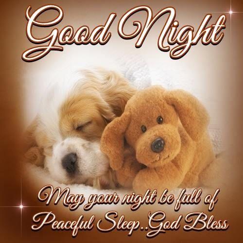 Latest Good Night God Bless Quotes - Mesgulsinyali