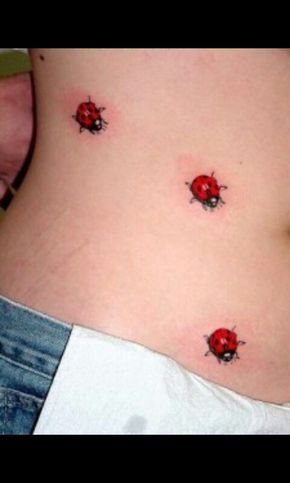 Ladybug trail tattoo expand idea                                                                                                                                                                                 More