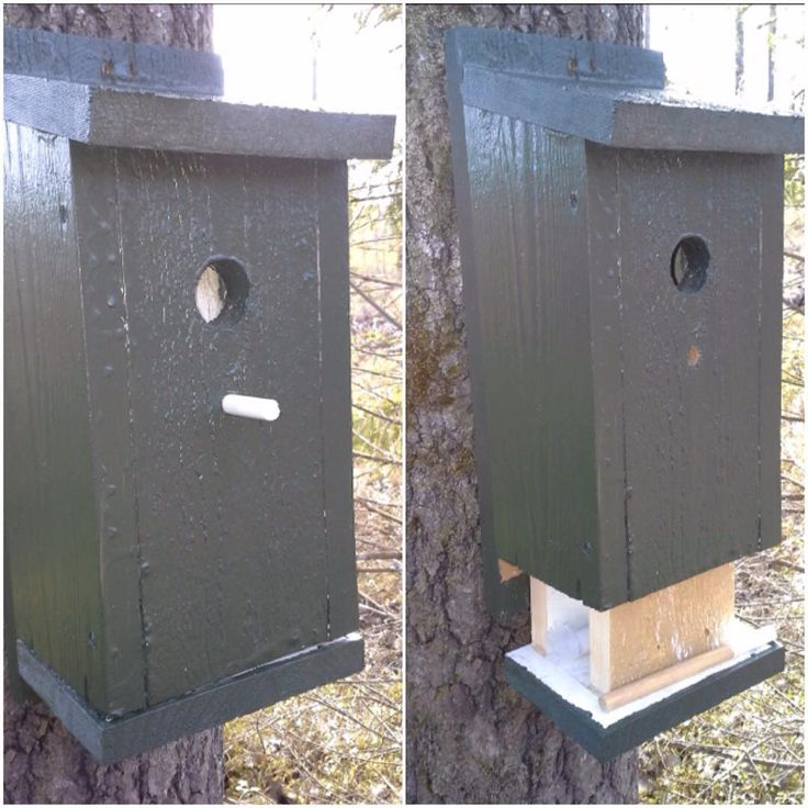 Very nicely done birdhouse geocache and I love the release mechanism. It looks like you pull out the perch peg to let the internal section drop and access the cache. Very creative and easy to implement! (pic by karjir)  #IBGCp