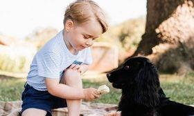 Πρίγκιπας Τζορτζ: Αλλάζει τις παιδικές διατροφικές συνήθειες της Βρετανίας με Γαλλικές φακές   Επιδραστικός από πάντα στη βιομηχανία του βρεφικής ένδυσης (όταν ο απόγονος των Ουίλιαμ & Κέιτ φόρεσε κοντό παντελόνι κάθε αγοράκι στη Βρετανία ντύθηκε στο  from Ροή http://ift.tt/2wmGK46 Ροή