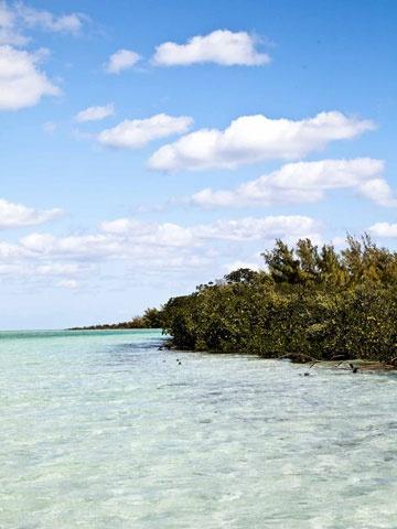 Photo Credit: Peter Frank Edwards.: Bahama Photos, Photos Credit