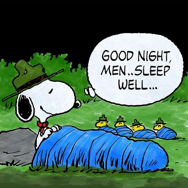 Good Night Men - Sleep Well - Scoutmaster Snoopy and Cadets Woodstock and Friends on Camp Out