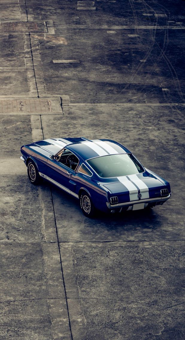 Mustang Fastback GT 350