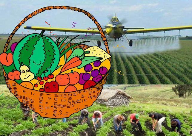 Agricultura ecológica versus agricultura convencional - Fernando Valladares