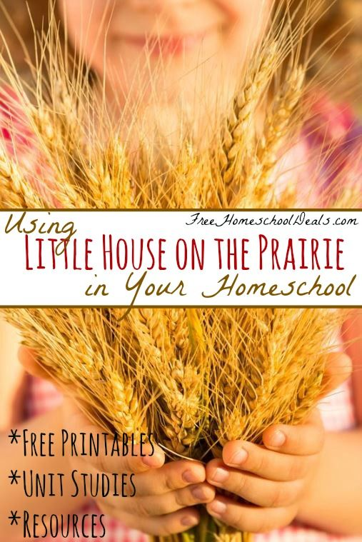 This post contains my referral link which helps supportthe work of this site. Here's my fulldisclosure policy.  Using Little House on the Prairie in You