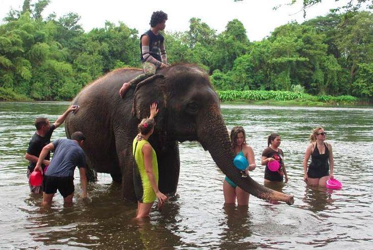 ourists help to bathe an elephant at Elephants World, Kanchanaburi. Image by Sarah Reid Lonely Planet
