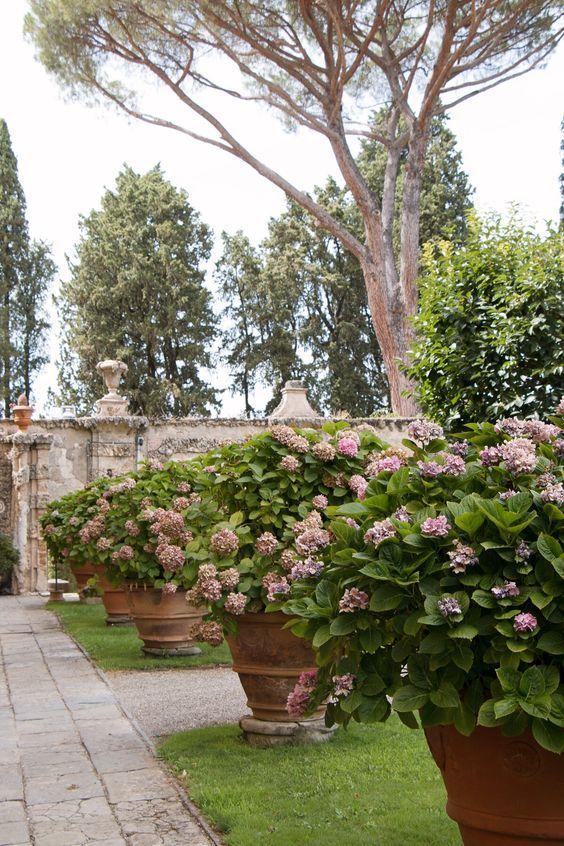 Villa La Pietra, Firenze, Italia.