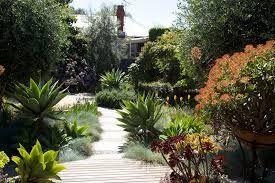 australian garden design - Google Search