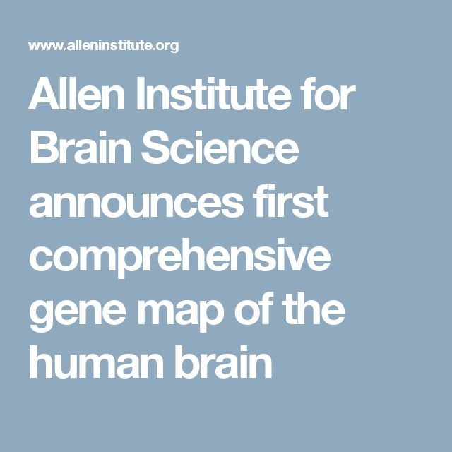Allen Institute for Brain Science announces first comprehensive gene map of the human brain