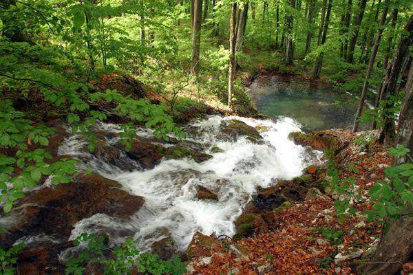 Retezat National Park.