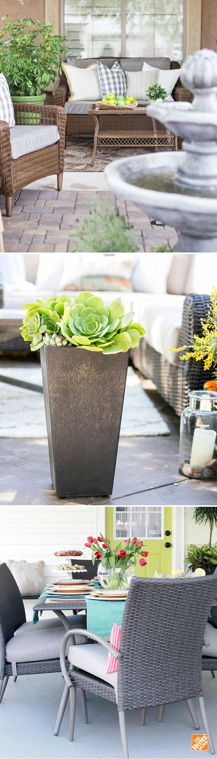 17 Best images about Garden Club – Home Depot Garden Plants