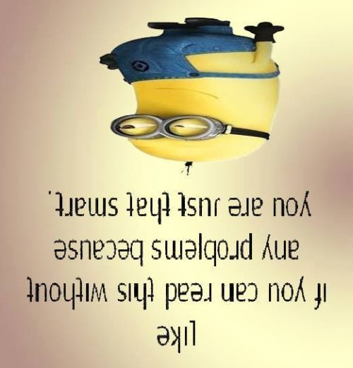 Funniest Minions Quotes On The Internet 423