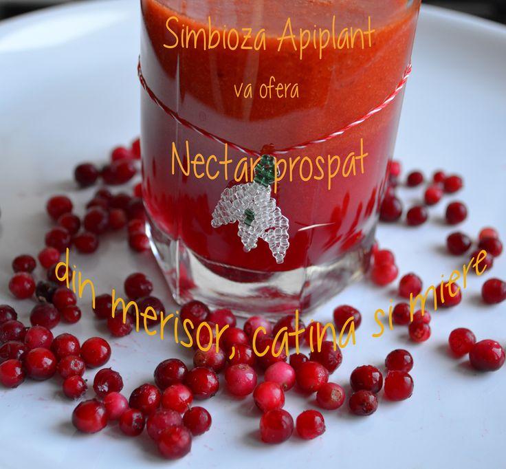 Nectar de merisor, catina si miere, de la Simbioza Apiplant