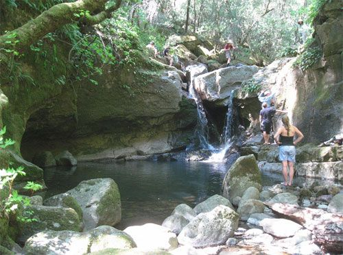 Napa Hiking: Devils Punchbowl Falls Hiking & Trail - Your Guide to Hikes and Hiking in Napa Valley & Bay Area Hiking, California