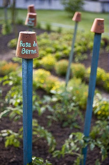Tuteur jardin for Achat en ligne jardinage