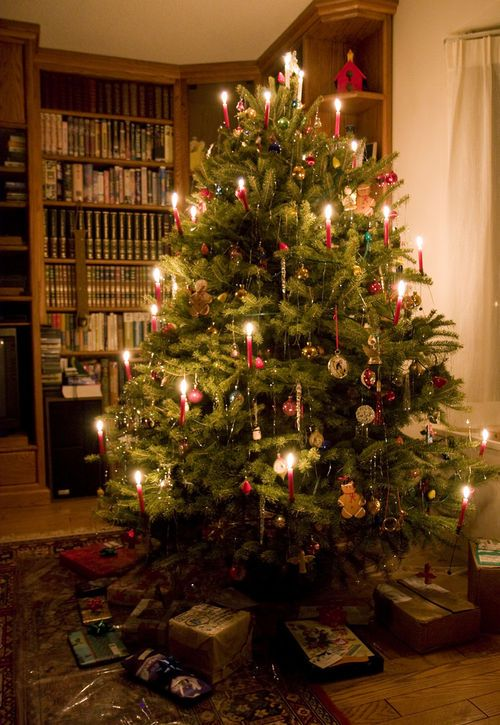 I love candles on Christmas trees, so pretty. I use the electric ones that look real, but won't burn down the house.