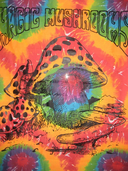 American Hippie Psychedelic Art Trippy ~ Magic Mushrooms ...