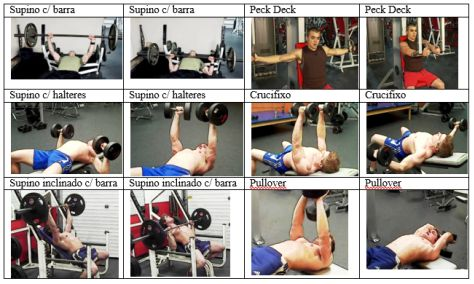 Tabela-exercicios-peito