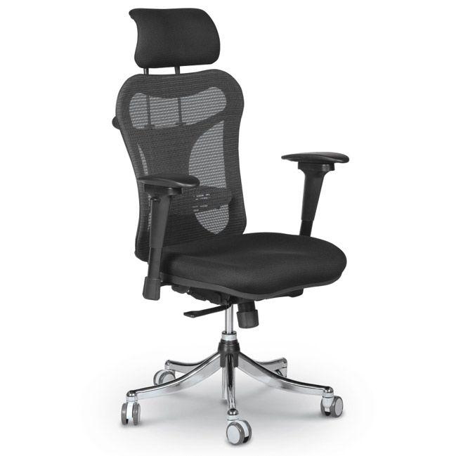 Ergo Ex Ergonomic Chair In 2020 Black Office Chair Ergonomic