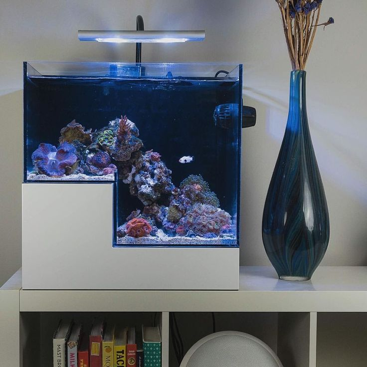 I want this drop off aquarium, or something close.