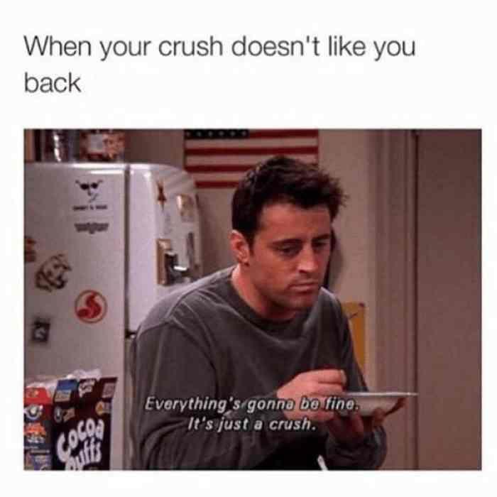 Top Funny Memes About Crush Crush Block Memes Laughing So Hard Funny Crush Memes Crush Memes