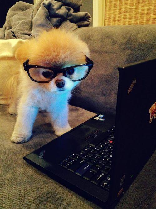just doing my homework