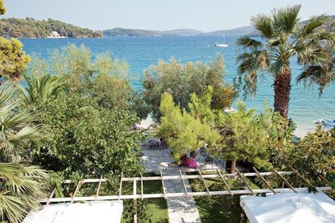 Τhe nice area of Eva Beach Hotel