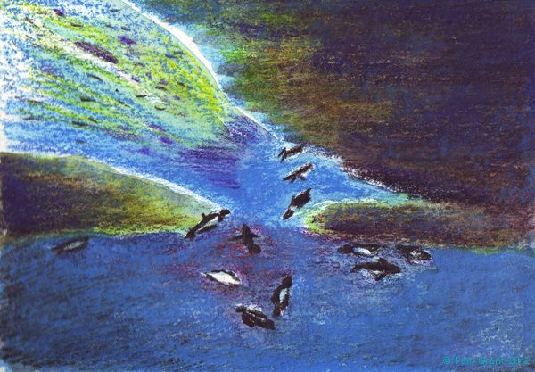 Under the ice: imaginary coloured crayon drawing of diving penguins drawn for the Keswick Pencil Museum workshop