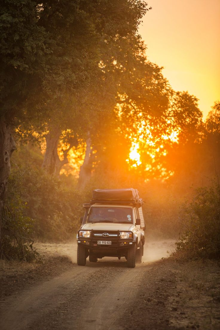 Hit the road in Zambia for an unforgettable safari.