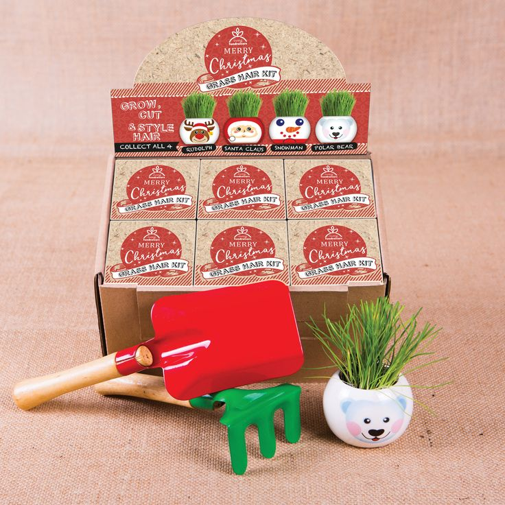 Grass Hair Kits - Christmas Range - Living Fundraisers. A fundraising option for schools, christmas stalls and markets and more