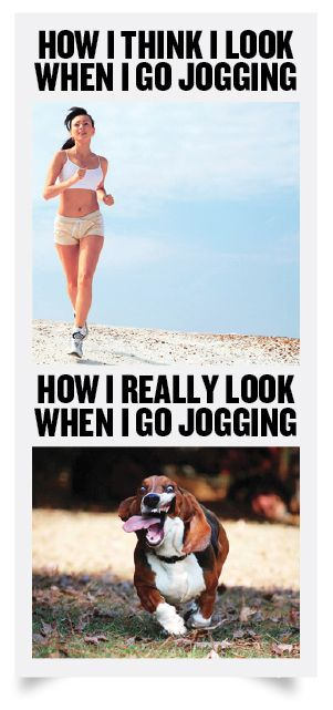 HahaJogging, Dogs, Laugh, Fit Sexy, So True, Funny Stuff, Funny Commercials, Hilarious, True Stories