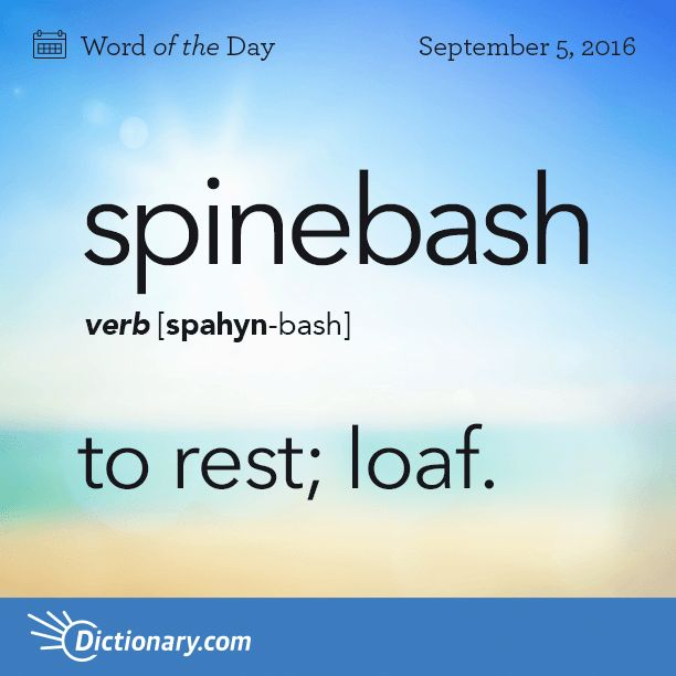 Dictionary.com's Word of the Day - spinebash - Australian Slang. to rest